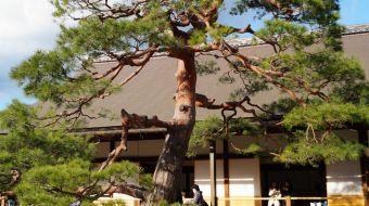 galerie-arashiyama-21