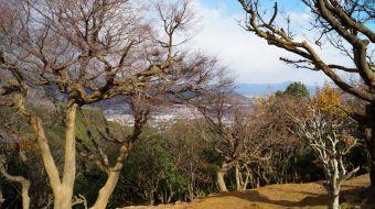 galerie-arashiyama-29