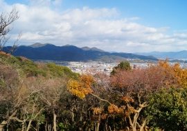 galerie-arashiyama-34