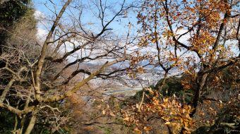 galerie-arashiyama-36