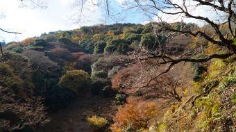 galerie-arashiyama-37