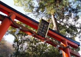 galerie-arashiyama-39