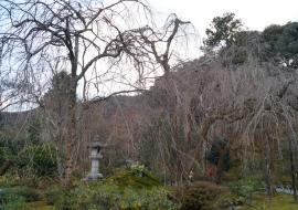 galerie-arashiyama-19