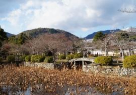 galerie-arashiyama-24