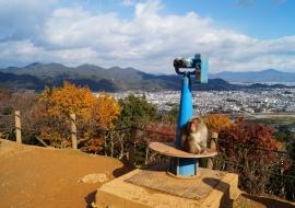 galerie-arashiyama-33