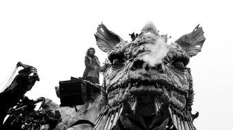 dragon-calais-galerie-04