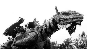 dragon-calais-galerie-05