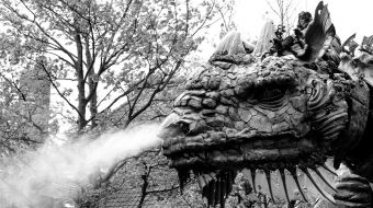 dragon-calais-galerie-11