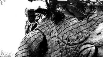 dragon-calais-galerie-13