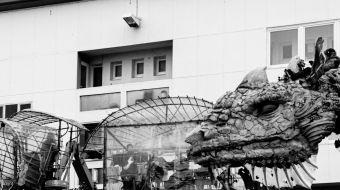 dragon-calais-galerie-19