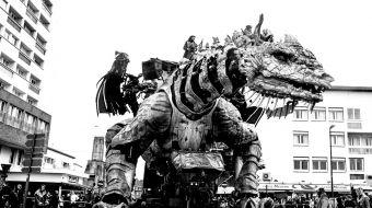 dragon-calais-galerie-20