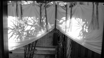 galerie-photo-noir-blanc-41