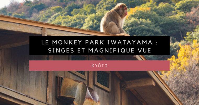 <h1>[Kyôto] Le Monkey Park Iwatayama : singes et vue magnifique</h1>