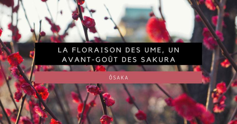 <h1>[Ôsaka] La floraison des Ume, un avant-goût des Sakura</h1>
