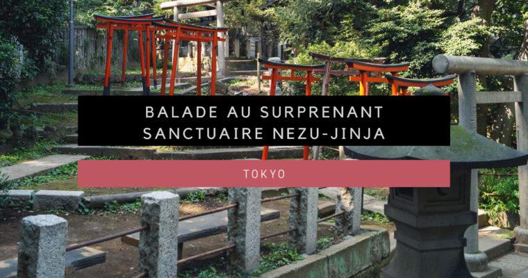 <h1>[Tokyo] Le sanctuaire Nezu Jinja</h1>