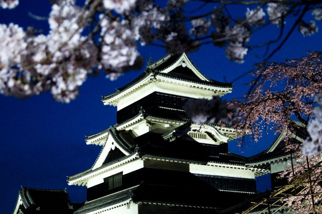 Château de Matsumoto pendant les Sakura