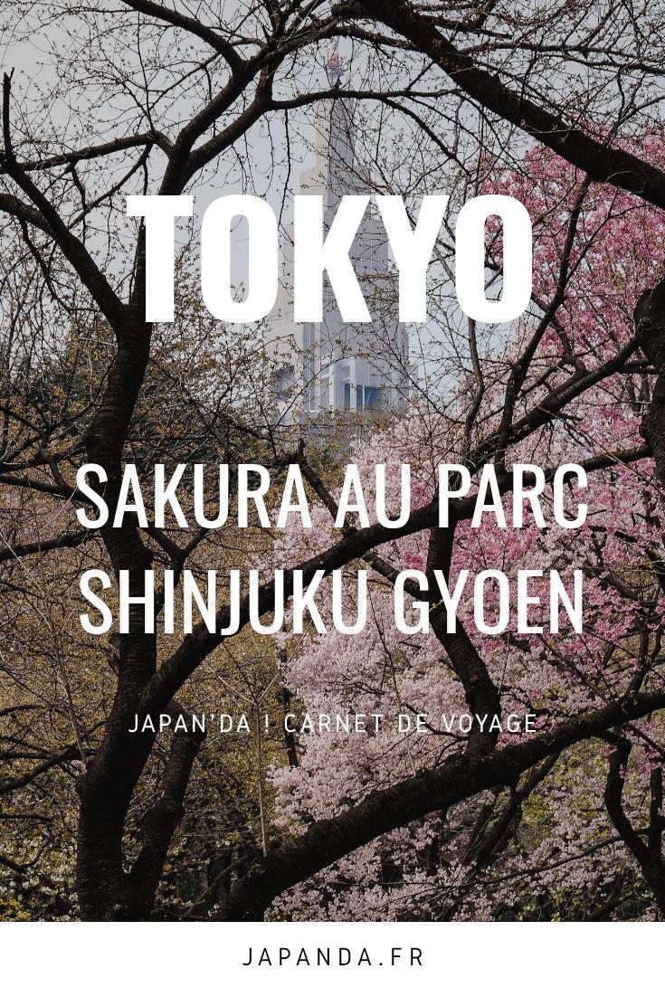 Sakura Shinjuku-gyoen