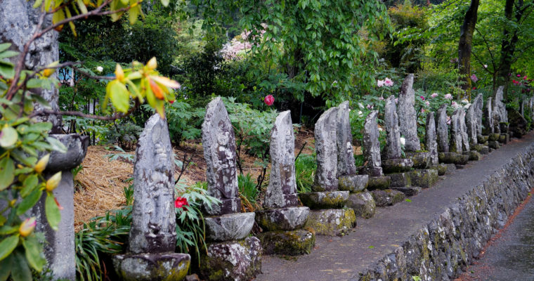 Genkô-ji 玄向寺 et Botan matsuri ぼたん祭り, Matsumoto