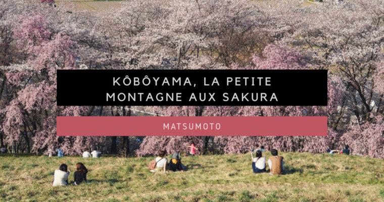 <h1>[Matsumoto] Kôbôyama, la petite montagne aux Sakura</h1>