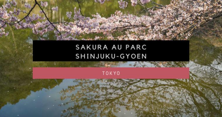 <h1>[Tokyo] Sakura au Parc Shinjuku Gyoen</h1>