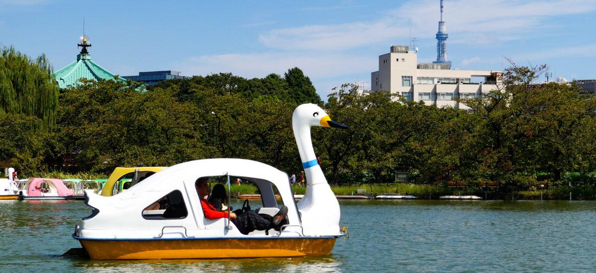Balade en pédalo sur l'Étang Shinobazu 不忍池 au parc Ueno, Tôkyô