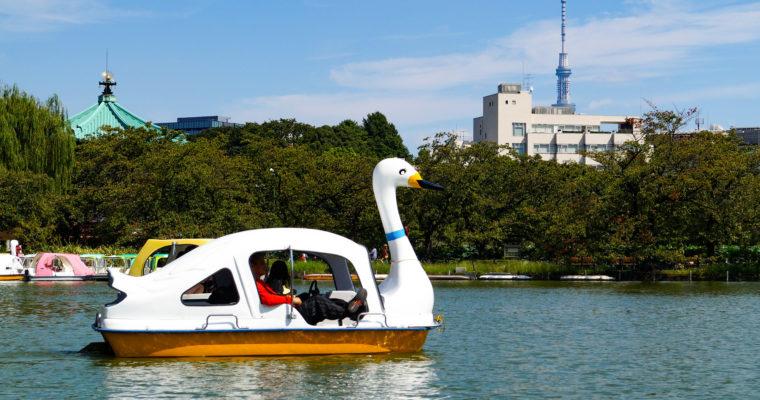 Balade en pédalo sur l'Étang de Shinobazu 不忍池 au parc Ueno, Tôkyô