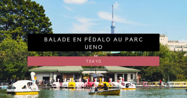 <h1>[Tokyo] Balade en pédalo au parc Ueno</h1>