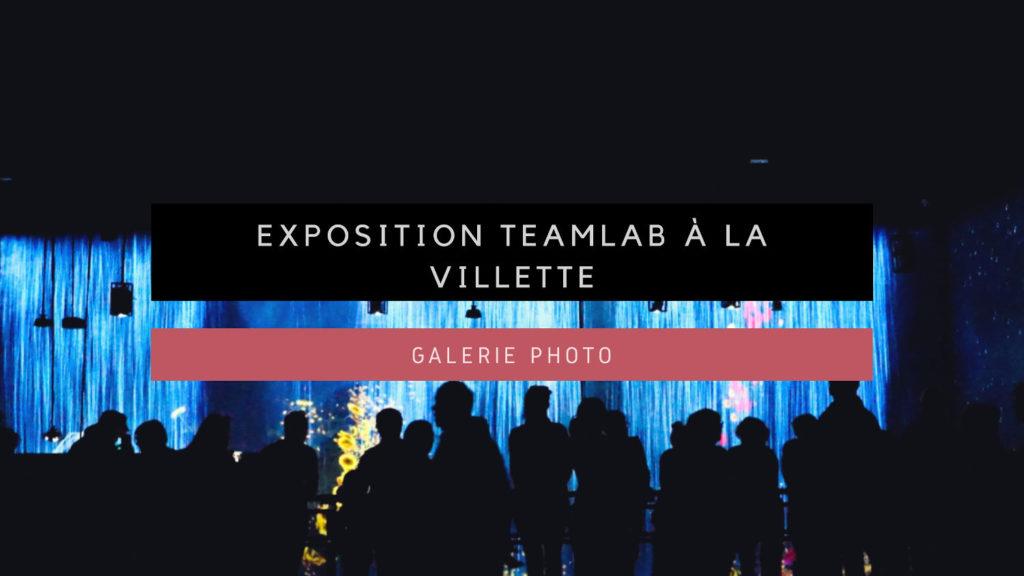 Expo teamLab Vignette