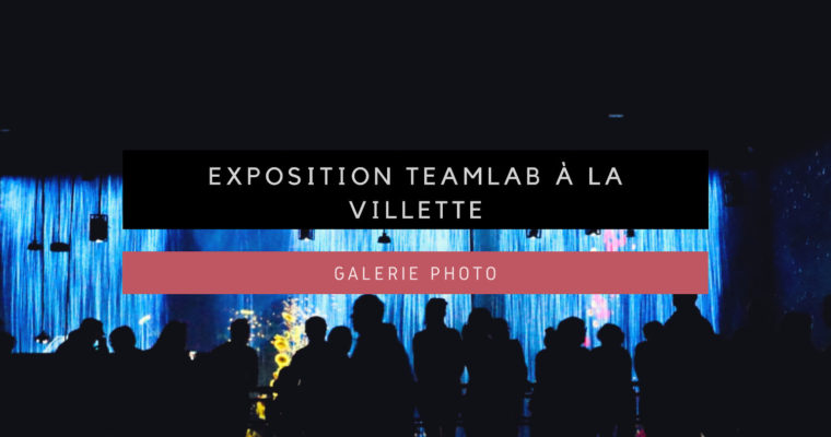 [Galerie Photo] teamLab à La Villette