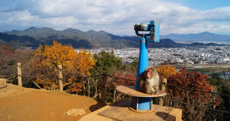 Galerie Photo : une journée en automne à Arashiyama