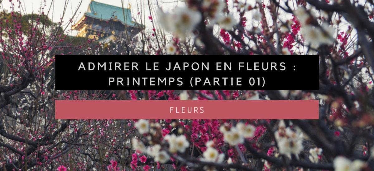 Admirer le Japon en fleurs : Printemps (Partie 01)