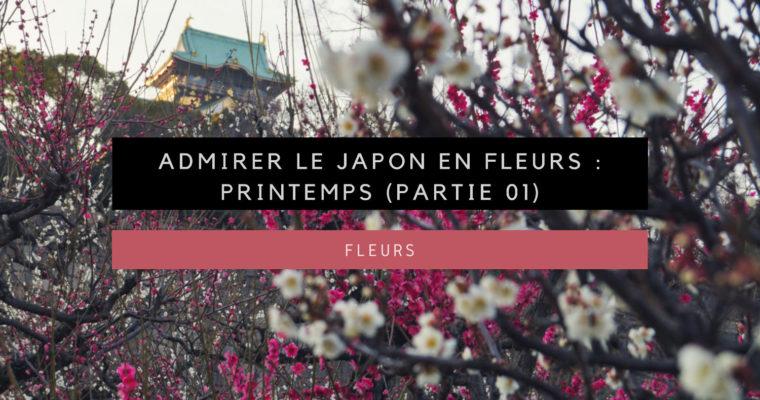 <h1>Admirer le Japon en fleurs : Printemps (Partie 01)</h1>
