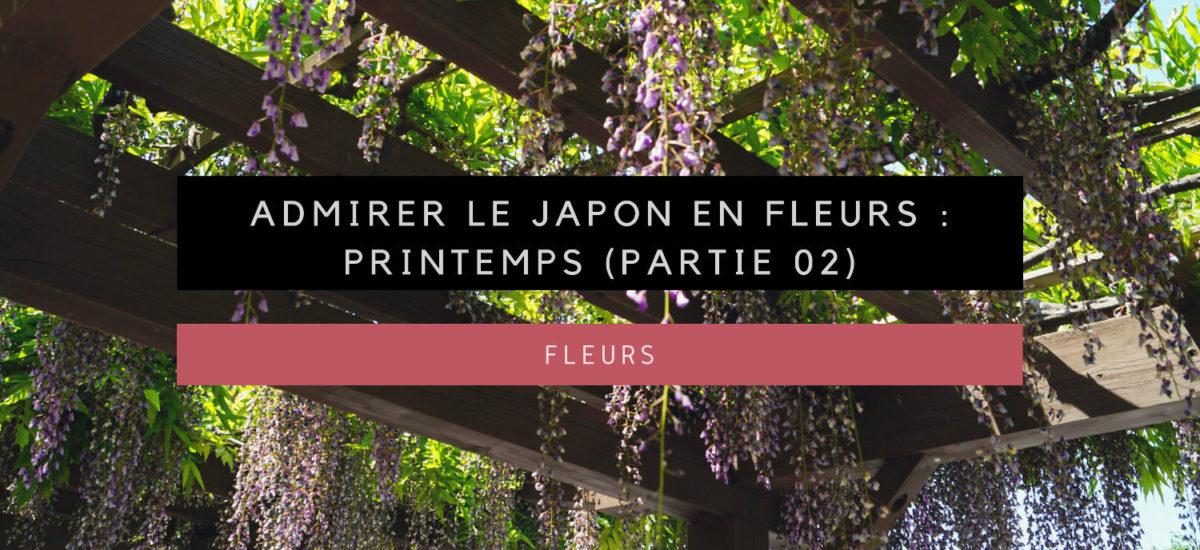 Admirer les fleurs au Japon : Printemps (02)