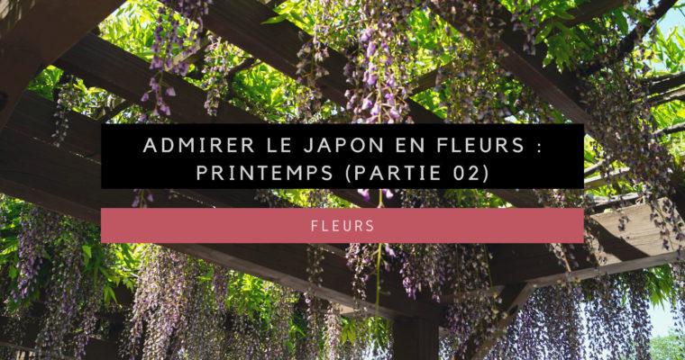 <h1>Admirer les fleurs au Japon : Printemps (02)</h1>