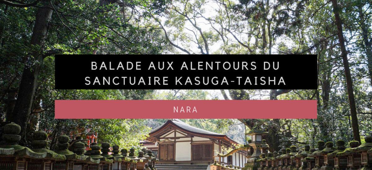 [Nara] Balade aux alentours du sanctuaire Kasuga-taisha