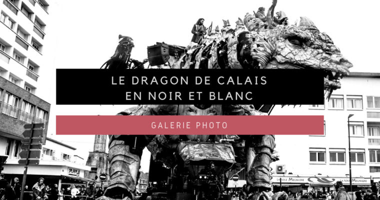 <h1>[Galerie Photo] Le dragon de Calais en noir et blanc</h1>