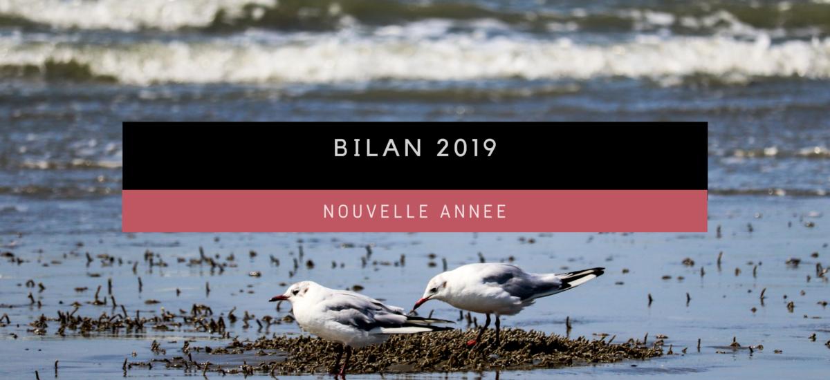 [Nouvelle année] Bilan 2019