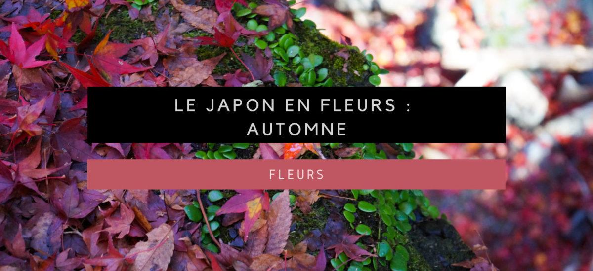 [Le Japon en fleurs] Admirer les fleurs au Japon : automne