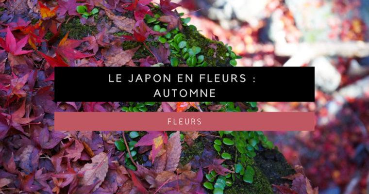 <h1>[Le Japon en fleurs] Admirer les fleurs au Japon : automne</h1>