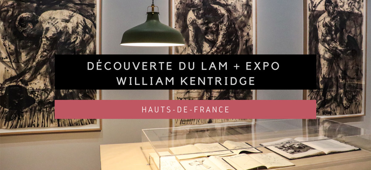 [Hauts-de-France] Visite du LaM et de l'incroyable exposition William Kentridge