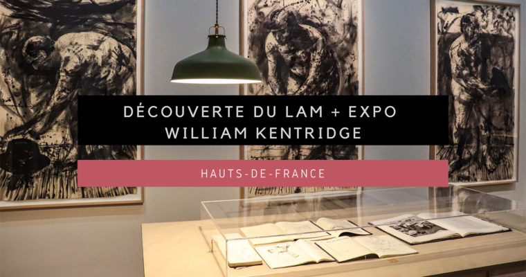 <h1>[Hauts-de-France] Visite du LaM et de l'incroyable exposition William Kentridge</h1>