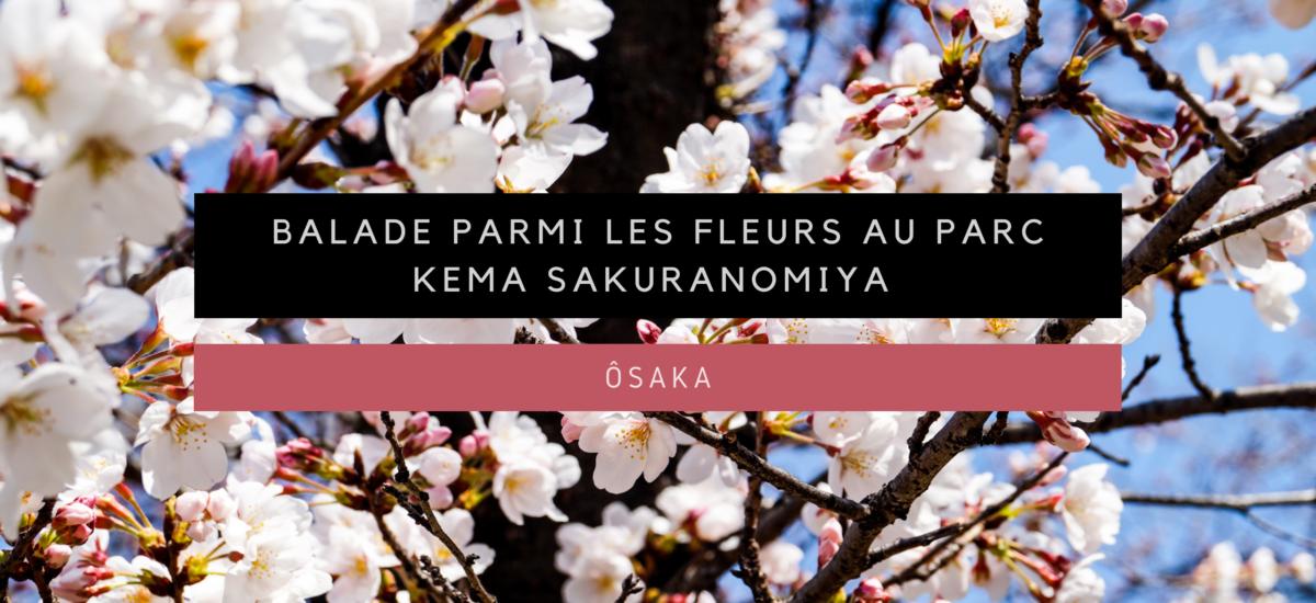 [Ôsaka] Balade parmi les fleurs au parc Kema Sakuranomiya