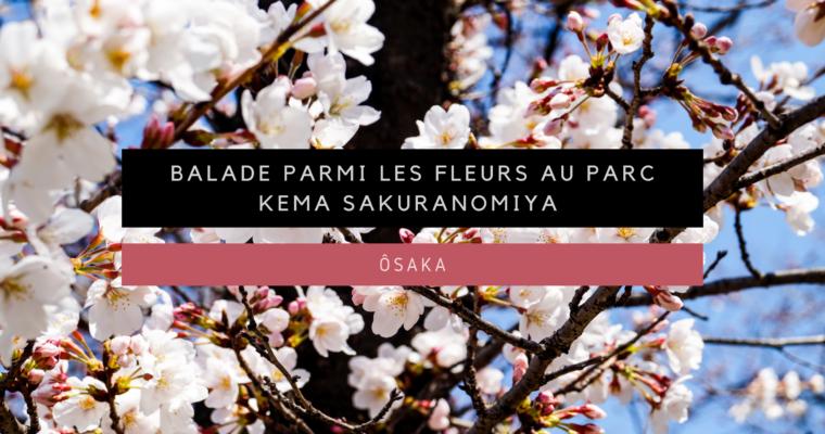 <h1>[Ôsaka] Balade parmi les fleurs au parc Kema Sakuranomiya</h1>